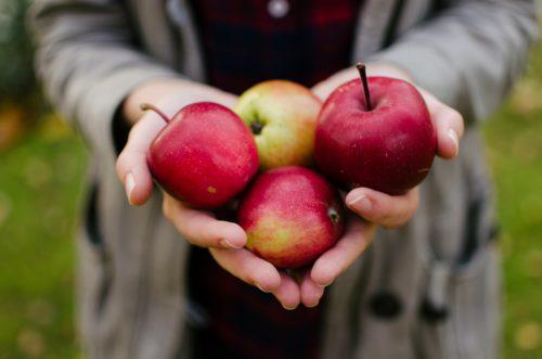 持っている口数をリンゴで表現。